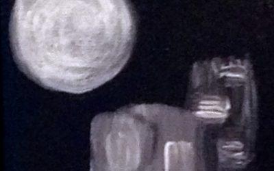 """Recueil """"Points de vue depuis la lune"""""""